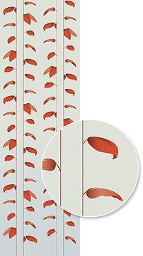 Mustertapete Plantas 03