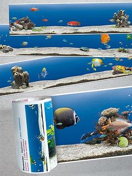 Panorama Borte Aquarium